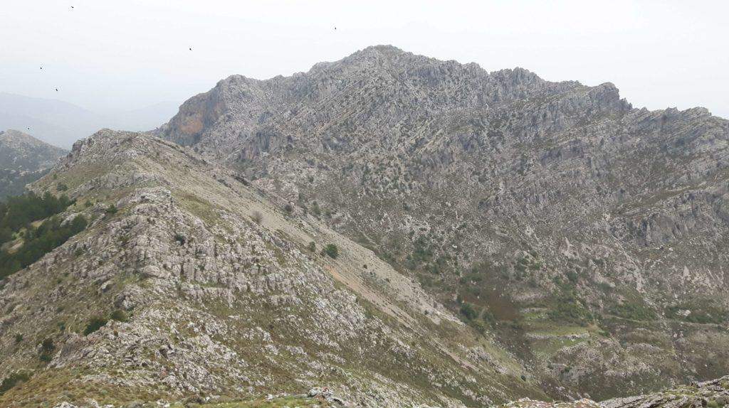 Sierra Cabrilla. Casarabonela. Sierra de las Nieves.