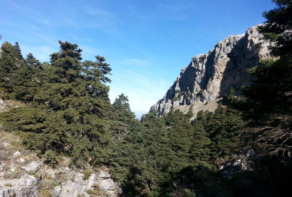 Los Sauces_Cueva del Agua. El Burgo. Parque Nacional Sierra de las Nieves.
